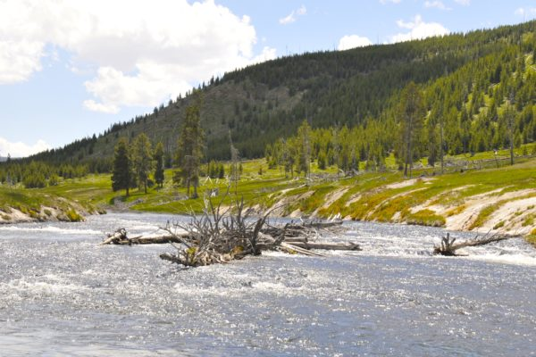 Day trips from Jackson Hole river in yellowstone